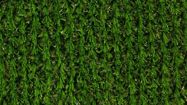 Revolution Grass 1