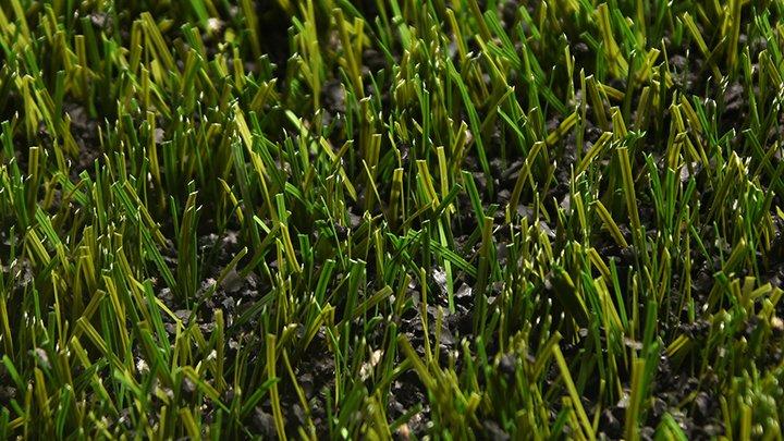 ATLAS GRASS